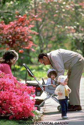 Family in Japanese Garden