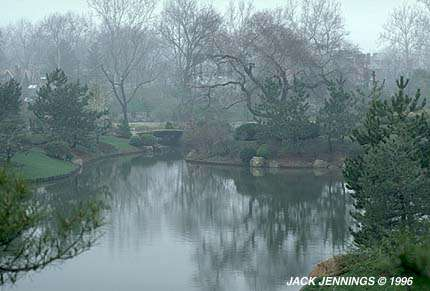 Japanese Garden in Fog