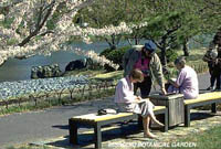 Visitors in Japanese Garden