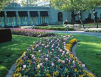 Milles Sculpture Garden and Victoria Lilies