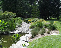 Dry Streambed Garden and pond