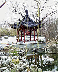 Pavilion with willow
