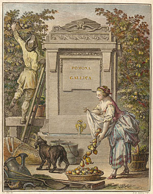 Frontispiece from Traité des arbres fruitiers by Henri-Louis Duhamel du Monceau