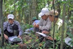 Field work in the Central Truong Son (Annamites)