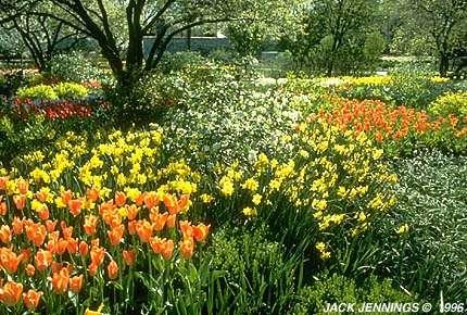 Samuels Bulb Garden