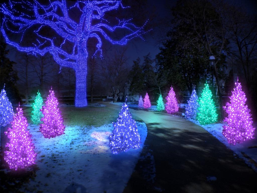 Missouri Botanical Garden Glow Fasci Garden